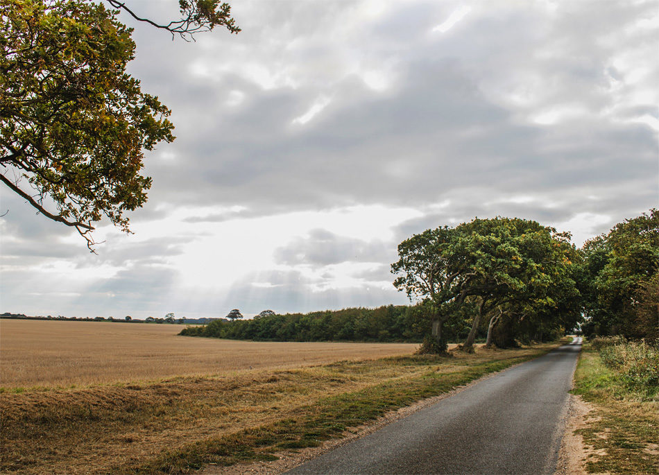 A great cycle route through flat lanes and rolling countryside